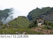 Купить «forest clouds valley fog nebelmeer», фото № 12228806, снято 17 июля 2019 г. (c) PantherMedia / Фотобанк Лори