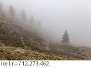 Купить «mountain mountains alps peak summit», фото № 12273462, снято 22 июля 2019 г. (c) PantherMedia / Фотобанк Лори