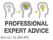 Купить «Professional Expert Advice», фото № 12283470, снято 16 июня 2019 г. (c) PantherMedia / Фотобанк Лори