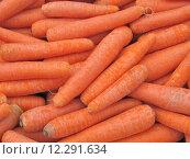 Купить «Carrots », фото № 12291634, снято 19 сентября 2019 г. (c) PantherMedia / Фотобанк Лори