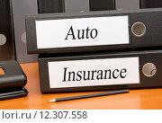 Купить «Auto Insurance», фото № 12307558, снято 4 апреля 2020 г. (c) PantherMedia / Фотобанк Лори
