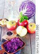 Купить «Fresh Ingredients for Cabbage and Apple Salad», фото № 12311090, снято 12 декабря 2017 г. (c) PantherMedia / Фотобанк Лори
