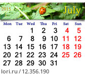 Купить «calendar for the July of 2015 with ladybird on the leaf», фото № 12356190, снято 19 марта 2019 г. (c) PantherMedia / Фотобанк Лори