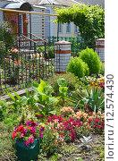 Купить «Красивый декоративный сад перед домом», фото № 12574430, снято 23 июля 2015 г. (c) Володина Ольга / Фотобанк Лори