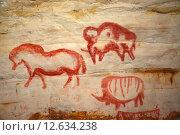 Купить «Наскальная живопись в Саблинской пещере», фото № 12634238, снято 12 декабря 2014 г. (c) Алексей Кокоулин / Фотобанк Лори