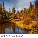 Осень в Карелии. Лесная река. Отражение в спокойной реке. Болото. Стоковое фото, фотограф Павел Семенцов / Фотобанк Лори