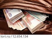 Купить «Крупная сумма в дамской сумочке», фото № 12654134, снято 23 сентября 2018 г. (c) OSHI / Фотобанк Лори