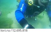 Купить «Подводный художник Юрий Адексеев рисует картину под водой в озере Байкал», видеоролик № 12695818, снято 5 сентября 2014 г. (c) Некрасов Андрей / Фотобанк Лори