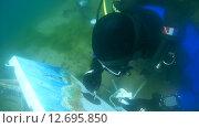 Купить «Подводный художник Юрий Адексеев рисует картину под водой в озере Байкал», видеоролик № 12695850, снято 5 сентября 2014 г. (c) Некрасов Андрей / Фотобанк Лори