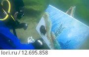 Купить «Подводный художник Юрий Адексеев рисует картину под водой в озере Байкал», видеоролик № 12695858, снято 5 сентября 2014 г. (c) Некрасов Андрей / Фотобанк Лори