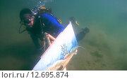 Купить «Подводный художник Юрий Адексеев рисует картину под водой в озере Байкал», видеоролик № 12695874, снято 5 сентября 2014 г. (c) Некрасов Андрей / Фотобанк Лори