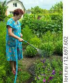Купить «Женщина поливает цветы на даче», эксклюзивное фото № 12697602, снято 3 июля 2015 г. (c) Вячеслав Палес / Фотобанк Лори