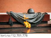 Купить «Вечный огонь в Москве на могиле Неизвестного солдата», фото № 12701778, снято 24 мая 2015 г. (c) g.bruev / Фотобанк Лори