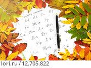 Купить «Прописи, ручка и яркие осенние листья», фото № 12705822, снято 18 сентября 2015 г. (c) Наталья Осипова / Фотобанк Лори