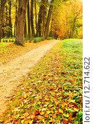 Купить «Парк осенью. Опавшие листья - Осенний пейзаж», фото № 12714622, снято 24 марта 2019 г. (c) Зезелина Марина / Фотобанк Лори