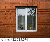 Окно в кирпичной стене. Стоковое фото, фотограф Сергей Макаров / Фотобанк Лори