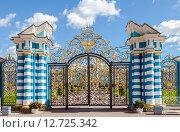 Купить «Санкт-Петербург, Пушкин. Ажурная решетка Екатерининского дворца», фото № 12725342, снято 18 июля 2018 г. (c) FotograFF / Фотобанк Лори