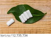 Купить «Жевательная резинка на зеленом листе», фото № 12735734, снято 9 сентября 2012 г. (c) Олег Жуков / Фотобанк Лори