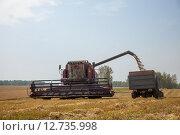 Купить «Зерно идет по шнеку в тракторный прицеп. Урожай 2015 года», эксклюзивное фото № 12735998, снято 8 сентября 2015 г. (c) Иван Карпов / Фотобанк Лори