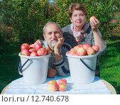 Купить «Счастливая пожилая пара в саду с  ведрами красных яблок», фото № 12740678, снято 20 сентября 2015 г. (c) Николай Коржов / Фотобанк Лори