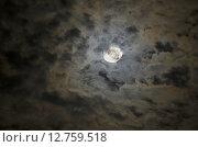 Купить «Лунный пейзаж», фото № 12759518, снято 1 сентября 2015 г. (c) Карданов Олег / Фотобанк Лори