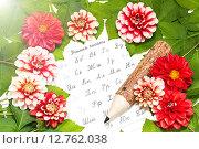 Купить «Открытка к 1 сентября», фото № 12762038, снято 19 сентября 2015 г. (c) Наталья Осипова / Фотобанк Лори