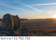 Купить «Катушки соломы на поле в Тульской области на рассвете», фото № 12762726, снято 25 сентября 2015 г. (c) Валерий Боярский / Фотобанк Лори