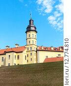Купить «Башня средневекового замка в Несвиже. Беларусь.», фото № 12774810, снято 23 сентября 2015 г. (c) Ласточкин Евгений / Фотобанк Лори
