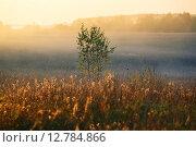 Купить «Осенний пейзаж», фото № 12784866, снято 1 октября 2007 г. (c) Морозова Татьяна / Фотобанк Лори