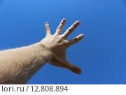 Рука к небесам. Стоковое фото, фотограф Сергей Плохов / Фотобанк Лори