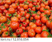 Купить «Tomatoes on the supermarket display», фото № 12816054, снято 7 января 2015 г. (c) Elnur / Фотобанк Лори
