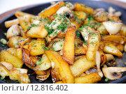 Жареный картофель с грибами в сковороде. Стоковое фото, фотограф Скулков Павел Олегович / Фотобанк Лори