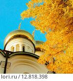 Церковь осенью. Стоковое фото, фотограф Алена Перфилова / Фотобанк Лори