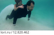 Купить «Жених катает невесту на спине под водой, Индийский океан, Мальдивские острова», видеоролик № 12820462, снято 2 октября 2015 г. (c) Некрасов Андрей / Фотобанк Лори