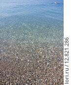 Галечный пляж Черного моря в Пицунде (район Рыбзавода). Абхазия, фото № 12821286, снято 7 августа 2015 г. (c) Алексей Ларионов / Фотобанк Лори