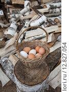 Купить «Плетеная корзина с яйцами на фоне дров из березы», фото № 12827054, снято 4 июня 2015 г. (c) Alechandro / Фотобанк Лори