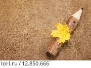 Открытка к 1 Сентября. Толстый карандаш и желтый кленовый лист на мешковине. Стоковое фото, фотограф Наталья Осипова / Фотобанк Лори