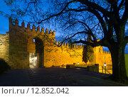Gate of Alcazar de los Reyes Cristianos in Cordoba (2014 год). Стоковое фото, фотограф Яков Филимонов / Фотобанк Лори