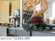 Автоматическая линия по производству фруктового льда и мороженого, фото № 12853390, снято 24 апреля 2015 г. (c) Евгений Ткачёв / Фотобанк Лори