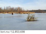 Купить «Первый лед на водоеме», эксклюзивное фото № 12853698, снято 27 декабря 2013 г. (c) Елена Коромыслова / Фотобанк Лори
