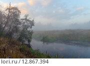 Купить «Река Торгоша в Московской области», фото № 12867394, снято 15 сентября 2015 г. (c) Валерий Боярский / Фотобанк Лори