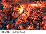 Купить «Красивый костёр с яркими раскалёнными углями», фото № 12869602, снято 3 октября 2015 г. (c) Алексей Маринченко / Фотобанк Лори