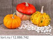Тыквы и тыквенные семена. Стоковое фото, фотограф Татьяна Зарубо / Фотобанк Лори