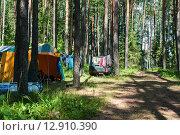 Купить «Туристическая стоянка в сосновом лесу возле города Осташков», эксклюзивное фото № 12910390, снято 4 июля 2015 г. (c) Игорь Низов / Фотобанк Лори