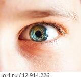 Купить «close-up child eye», фото № 12914226, снято 25 августа 2015 г. (c) Дмитрий Калиновский / Фотобанк Лори