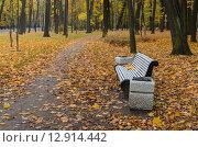 Скамейка с урнами в осеннем парке на Крестовском острове. Санкт-Петербург. Стоковое фото, фотограф Ивашков Александр / Фотобанк Лори