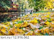 Купить «Опавшие листья в осеннем парке», фото № 12916062, снято 17 октября 2015 г. (c) Andrei Nekrassov / Фотобанк Лори