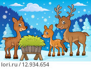 Купить «Deer theme image 1», иллюстрация № 12934654 (c) PantherMedia / Фотобанк Лори