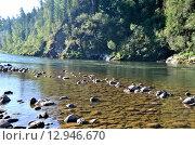 Купить «Вид на реку Бия, летний пейзаж, Алтай», фото № 12946670, снято 5 августа 2014 г. (c) Александр Карпенко / Фотобанк Лори