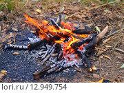 Огонь костра. Стоковое фото, фотограф Александр Палехов / Фотобанк Лори